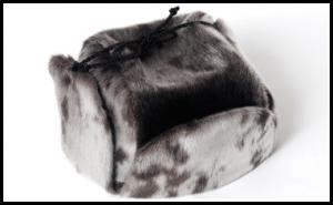 main-page-fur